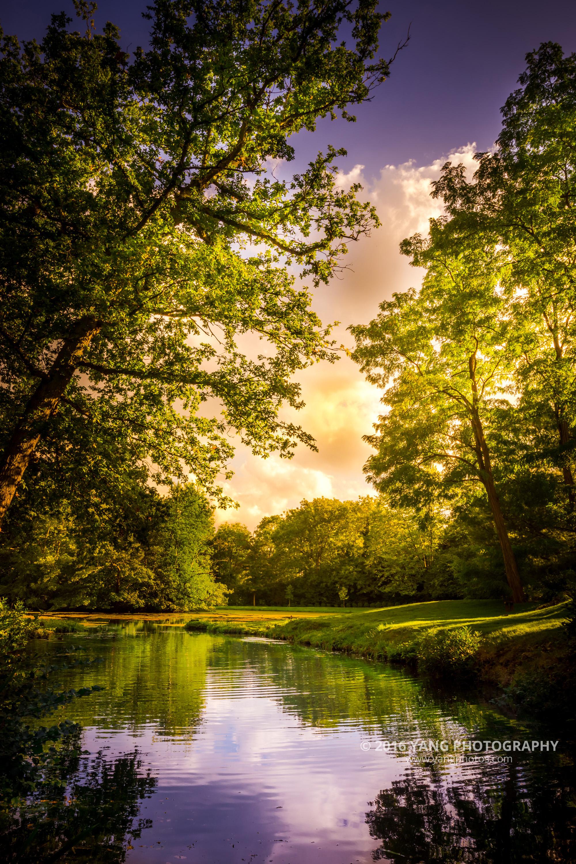 Surrey-Painshill
