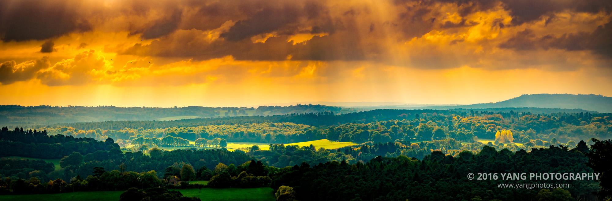 Surrey-Hills