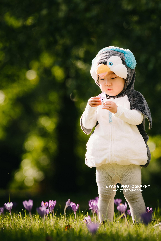 penguin-in-the-garden-Dodo-yangphotos